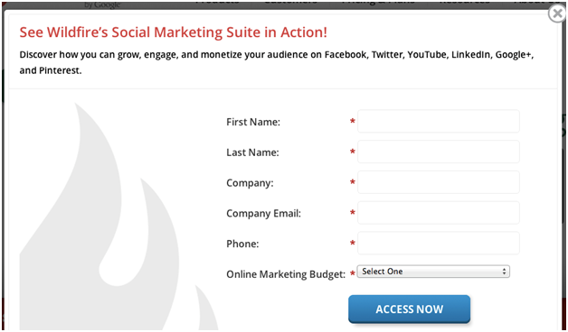 Lead Nurturing Landing  Page Example - WildFire